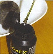 Clonex gyökereztető gél