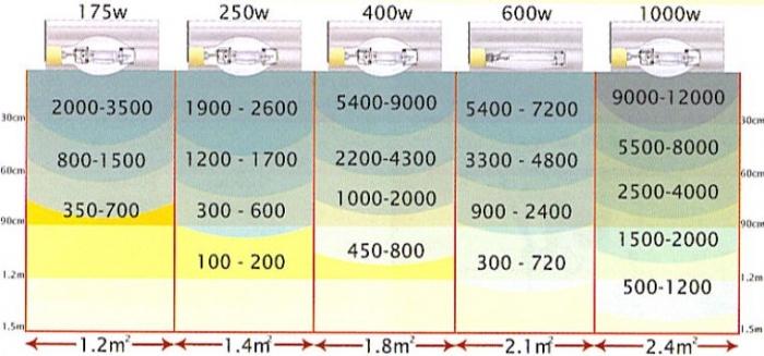700px-Meterlampa