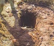 Ilyen gödröket lehet kitölteni jó minőségű, víztartó földkeverékekkel.(A képen egy szép nagy gödör látható)