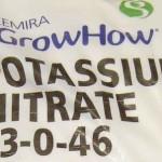 Potassium_Nitrate_99_