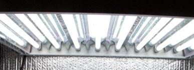 Fénycsövek, CFL